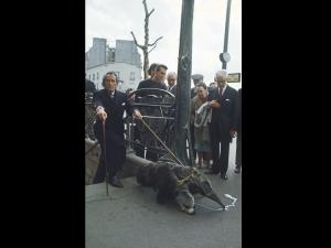 1969 Париж. Дали излиза от метрото с любимия мравоед.